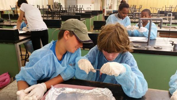 נוער שוחר מדע בפעולה