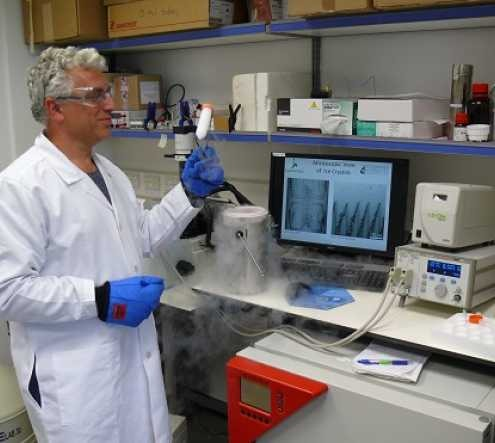 Prof. Ido Braslavsky at his lab