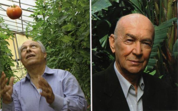 רבינוביץ וקידר