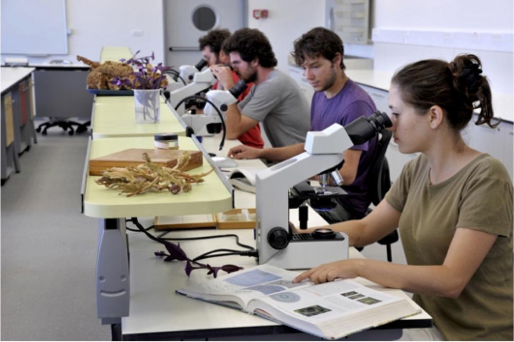 """סטודנטים במעבדת הקורס """"מבוא למדעי הצמח״"""