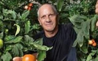 פוענח גנום העגבניה